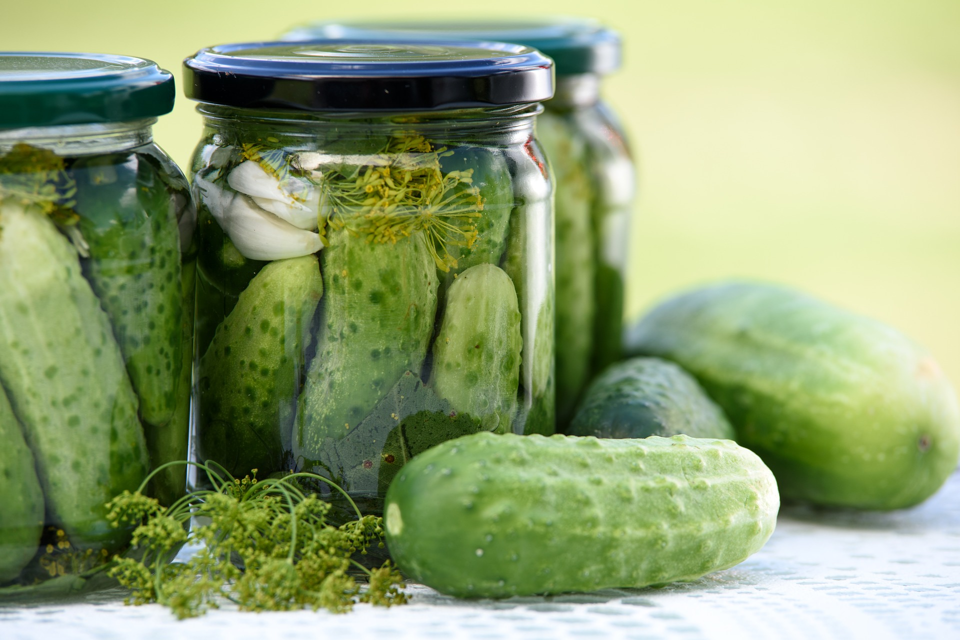 Pickled Cucumbers in Jar Outdoors