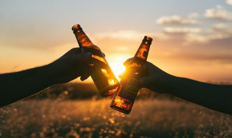 """Hands holding beer bottles while """"cheersing"""""""