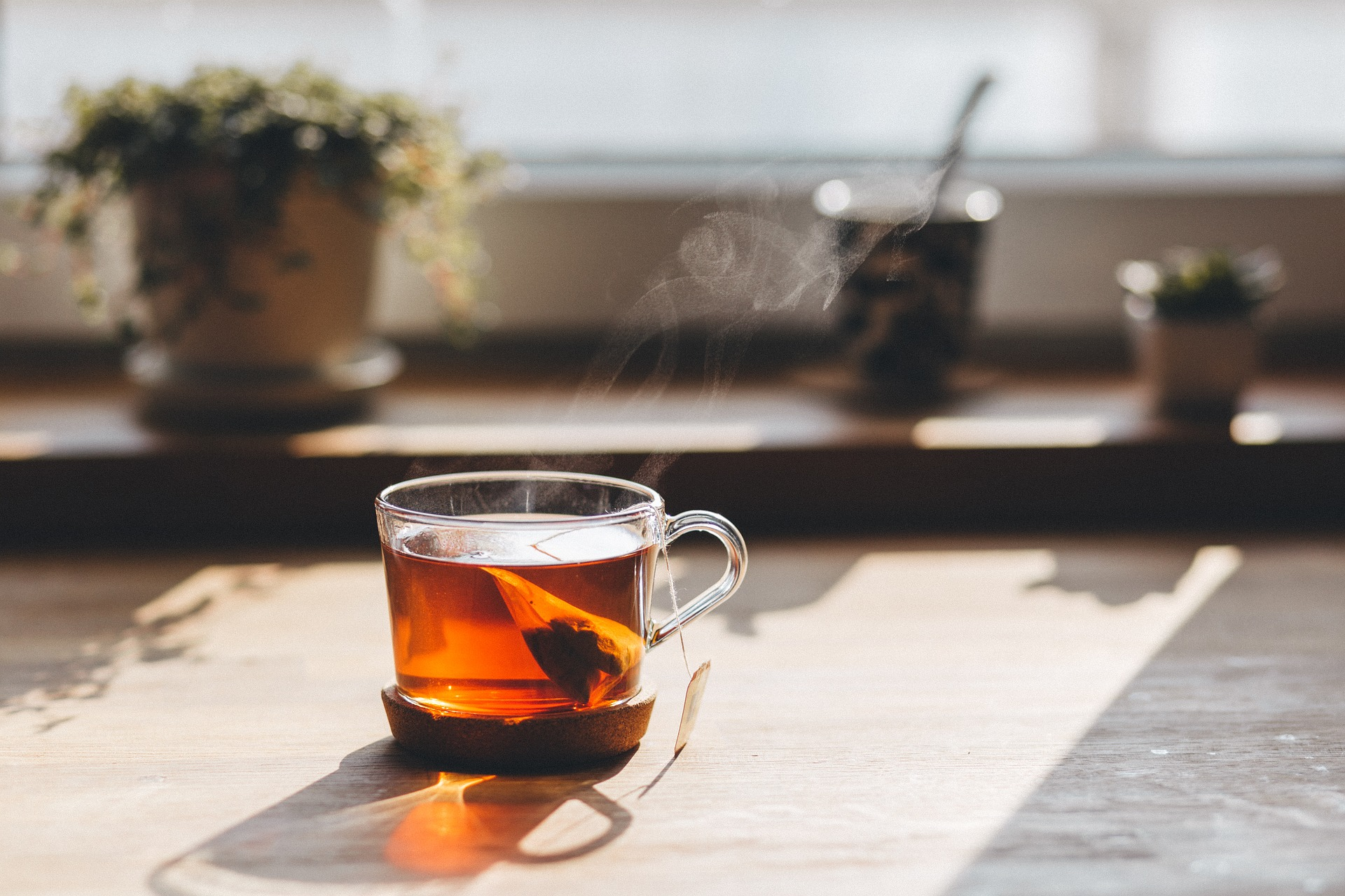 Hot tea in clear mug on kitchen table in front of window sill with flower pots